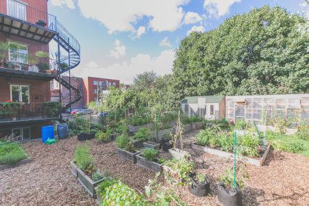 Agriculture urbaine - Circuit jardins