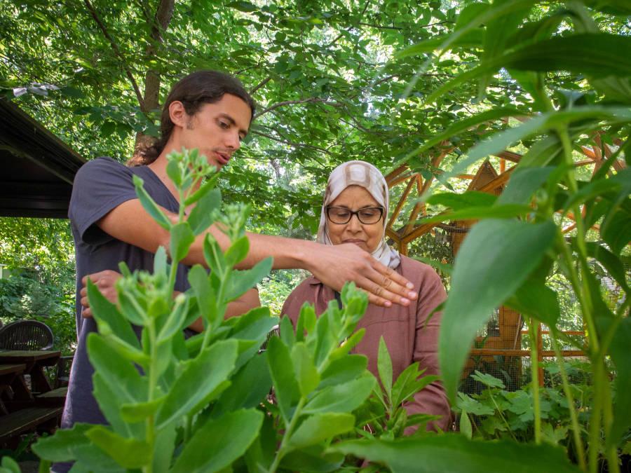 Visite jardin biodiversité et pollinisateurs - Club fleurs et jardins