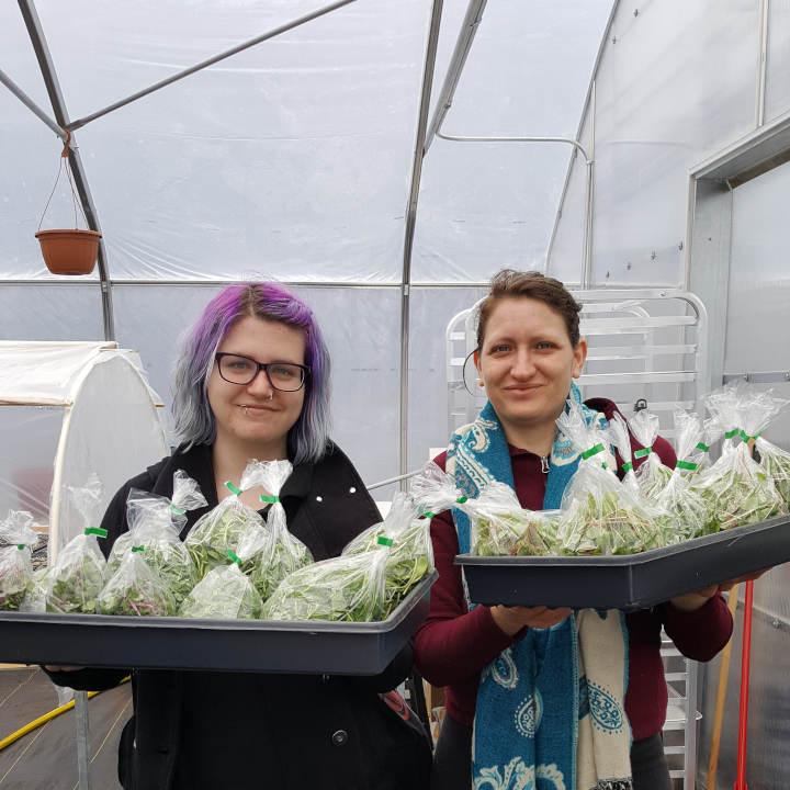 Deux bénévoles qui montrent les produits de la serre du quartier nourricier.