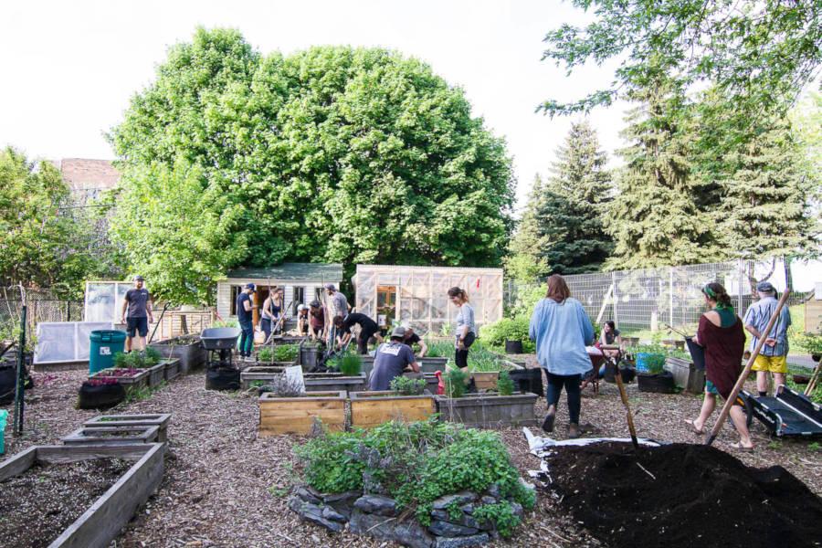 5 à 7 agriculture urbaine - Circuits Jardins