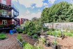 Jardin d'agriculture urbaine