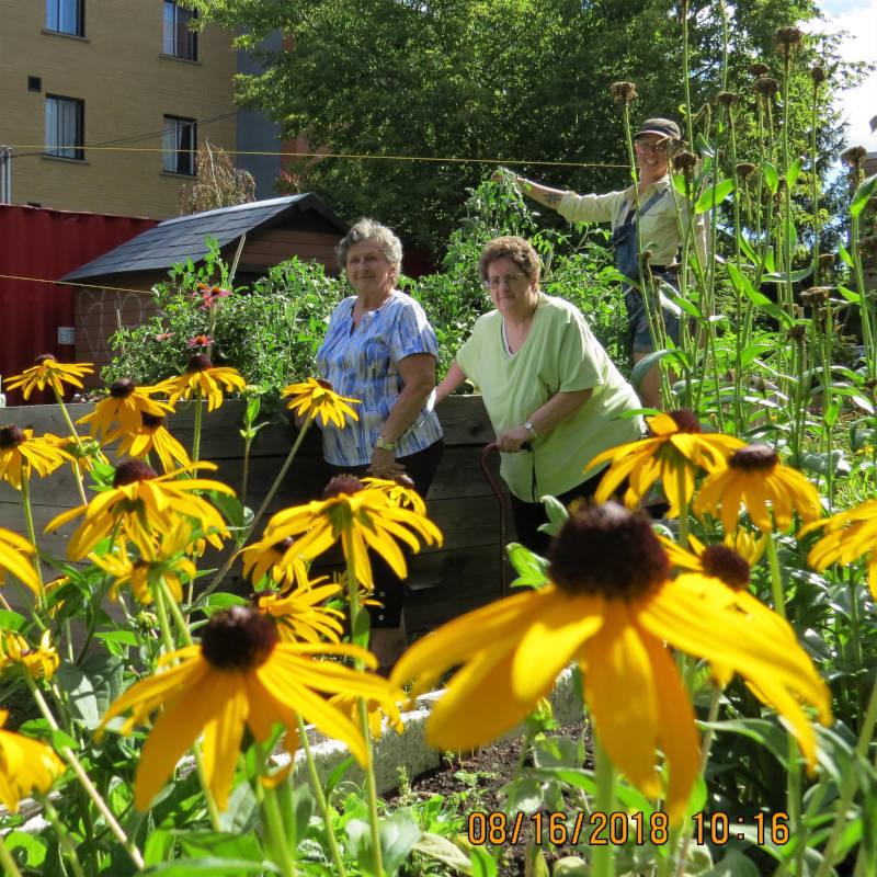 Saint-Tienne - Jardin fleurit