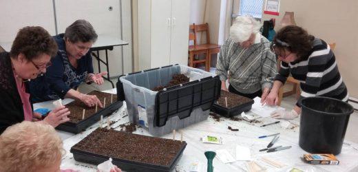 Saint Étienne - Atelier de semis