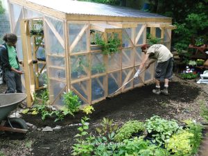 Sentier Urbain, Le Devoir du 30 juillet 2016 - La réinsertion sociale par l'horticulture