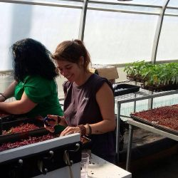 2-apprentis-jardiniers--la-serre-notre-quartier-nourricier