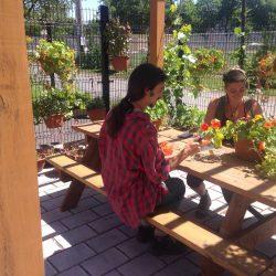 3-apprentis-jardiniers--la-serre-notre-quartier-nourricier